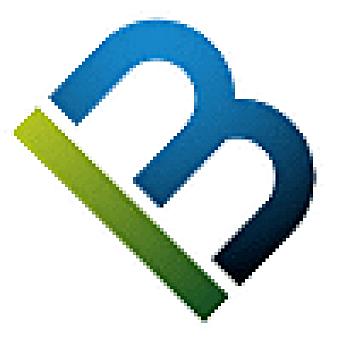Multibrain logo