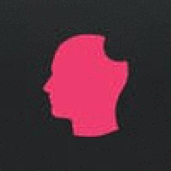 Delicious Brains Inc logo