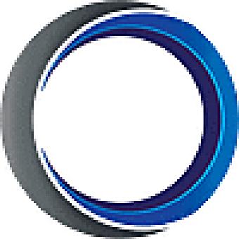 ShotFlow logo