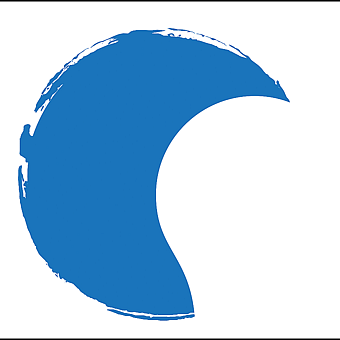 Bluelight Consulting logo