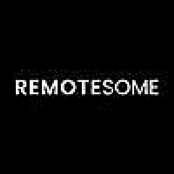Remotesome logo