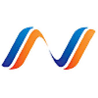 Netalico logo