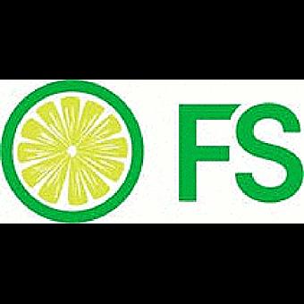 FreshySites Website Design logo