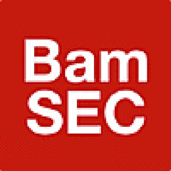 BamSEC Inc logo