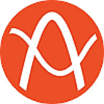 Audyo logo