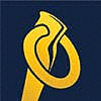 Piton Labs logo