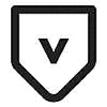 Valet Website Services logo