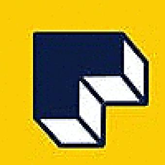 Raise.dev logo