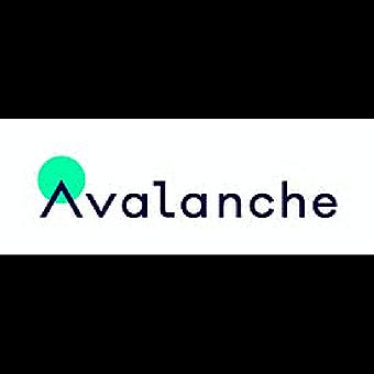 Avalanche Insights logo